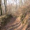 Teil des Graben- und Wegesystems am Fuße des Schlossbergs.