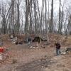 Das Camp mit beheizbarem Zelt ;)