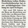 Kronen Zeitung, Jänner 2011